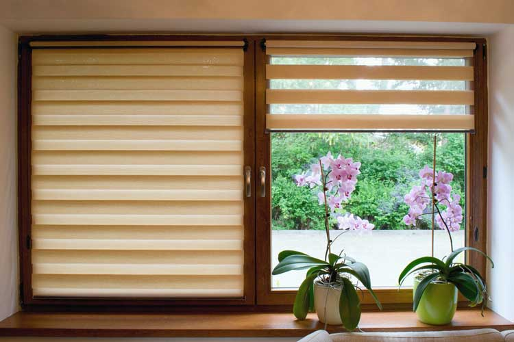 zebra blinds for windows